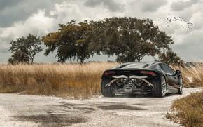 Picture Lamborghini, Tuning, Supercar, Rear, Huracan, Adv.1