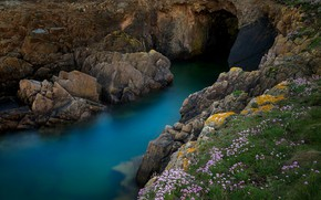 Picture sea, nature, stones, rocks, vegetation, cave