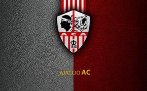 Picture wallpaper, sport, logo, football, Ligue 1, Ajaccio