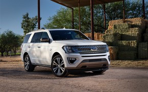 Picture white, Ford, SUV, Expedition, 2020