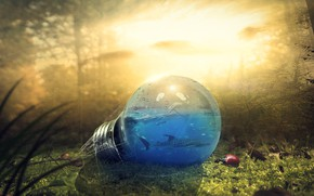 Wallpaper forest, light bulb, fish, nature, foliage, Bulb, bugs, fantasy author