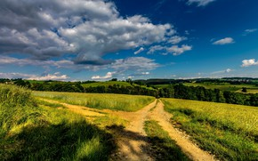 Picture road, field, forest, summer, the sky, grass, clouds, light, blue, hills, dal, village, space, shadows, …