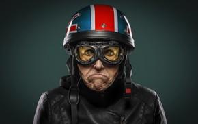 Picture background, portrait, Easy rider