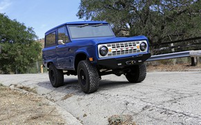 Picture blue, Ford, 2012, Bronco, ICON BR