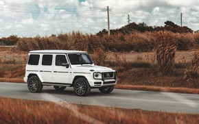 Picture Mercedes-Benz, Mercedes, G, G-class, Gelendvagen, Mercedes-Benz G-class, Mercedes-Benz G-Class