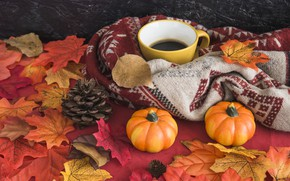 Picture autumn, leaves, background, tree, coffee, colorful, harvest, mug, Cup, pumpkin, vintage, wood, background, autumn, leaves, …