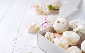 Picture white, pink, flowers, french, macaron, pastel, macaroon
