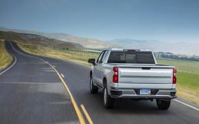Picture Chevrolet, rear view, pickup, Silverado, 2019, Silverado LT