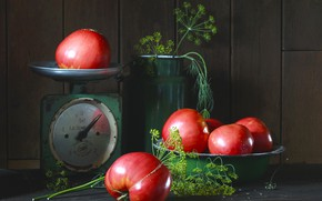 Picture dill, still life, tomatoes, cans