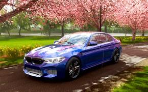 Picture Sakura, BMW, Rain, BMW, Sakura, M5 Competition, Forza Horizon 4, BMW M5 F90, M5F90