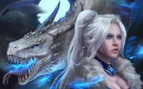 Picture fantasy, dragon, elf