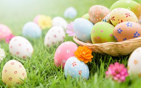 Picture grass, flowers, eggs, Easter, spring, Easter, eggs, decoration, pastel colors