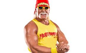 Picture mustache, pose, glasses, Hulk Hogan, actor, wrestler, biceps, showman, Terry Gene Bollea, Hulk Hogan
