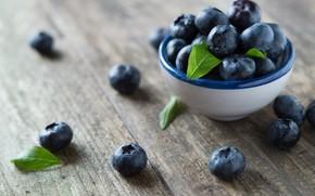 Picture berries, blueberries, wood, blueberries