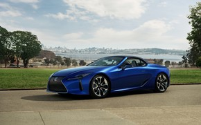 Picture grass, Lexus, convertible, the soft top, 2021, LC 500 Convertible