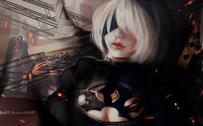 Picture girl, weapons, Nier Automata
