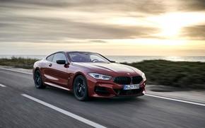 Picture coast, vegetation, coupe, BMW, Coupe, 2018, 8-Series, dark orange, M850i xDrive, Eight, G15