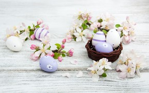 Picture flowers, branches, holiday, Easter, basket, Apple blossoms, Olena Rudo