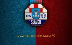 Picture wallpaper, sport, logo, football, Slaven Belupo Koprivnica