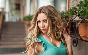Picture look, hair, Girl, blonde, curls, A Diakov George
