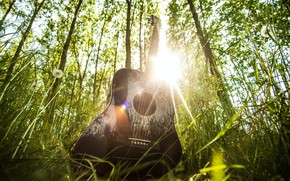 Picture forest, summer, grass, the sun, rays, light, music, mood, glade, guitar, musical instrument
