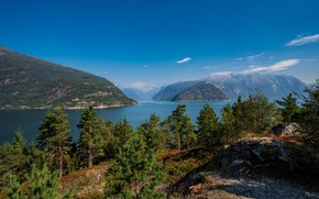 Picture the sky, trees, mountains, rocks, Norway, the fjord