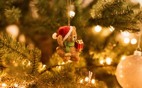 Picture light, lights, toy, ball, bear, bear, New year, bear, tree, needles, Teddy, hanging, Christmas toy