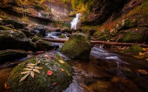 Picture autumn, leaves, stream, stones, rocks, waterfall, stream, log, river, falling leaves, pond, Bank, boulders, autumn, …