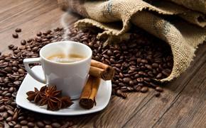 Picture photo, coffee, grain, Cup, cinnamon, carnation