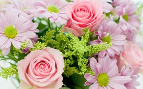 Picture tenderness, roses, bouquet, composition