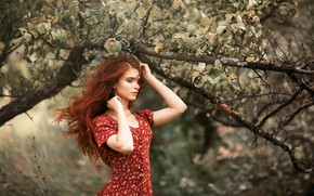 Picture girl, branches, pose, tree, hair, hands, red, Apple, redhead, closed eyes, Oleg Kovalenko