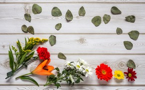 Picture flowers, colorful, wood, flowers, composition, floral