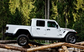 Picture forest, white, SUV, pickup, Gladiator, logs, 4x4, obstacle, Jeep, Rubicon, 2019