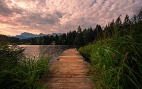 Picture Germany, Bavarian Alps, Lake, broken Gate