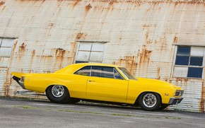 Picture Chevy, Super Sport, Chevelle, Vehicle, Chevelle SS