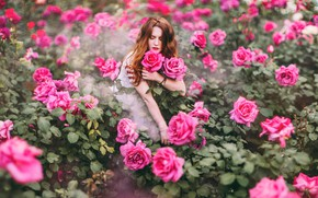 Picture girl, flowers, roses, Kristina Makeeva