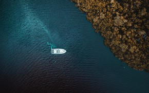 Picture Water, Sea, Trees, Yacht, Shore, Top, River, The view from the top