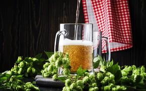 Picture foam, bubbles, the dark background, beer, towel, alcohol, mug, jet, hops, amber