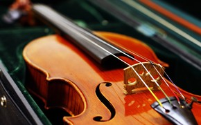 Picture Violin, Strings, Сонаты
