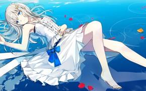 Picture water, girl, petals, Azur Lane