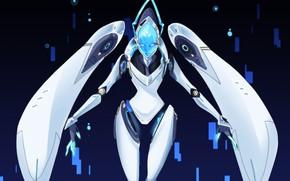 Picture robot, Echo, Overwatch