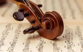 Picture Violin, Notes, Бемоли, Диезы