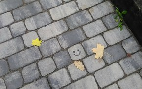 Picture pavers, smiley, autumn leaves