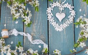 Picture heart, apple, spring, love, white, flowering, heart, wood, blossom, romantic, spring
