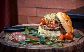 Picture stump, hamburger, Burger