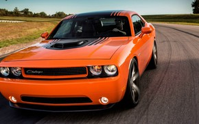 Picture Muscle, Car, Dodge Challenger, Speed, Road, Vehicle