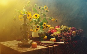 Picture flowers, bouquet, knife, fruit, still life, items, grenades, composition, decanter, rudbeckia, Winograd