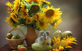 Picture flowers, Guinea pig, vegetables