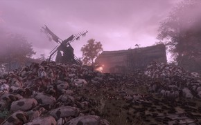 Picture mill, rats, corpses, a plague tale: innocence