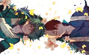 Picture butterfly, flowers, Lily, guys, Boku no Hero Academy, Midori Isuku, Todoroki Shoto, My heroic academia